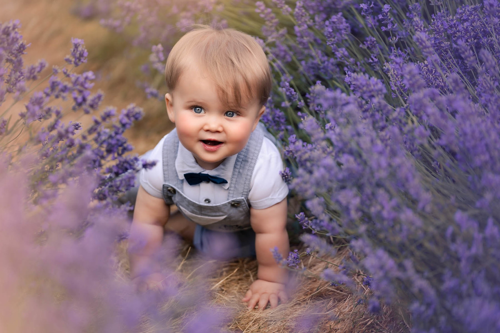 Childs portrait in lavender field
